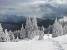 Трудная зима Стоковая Фотография