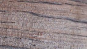 Механизм прерывного действия одушевил деревянную предпосылку текстуры полезную для старых влияний фильмов использующ инструмент с сток-видео