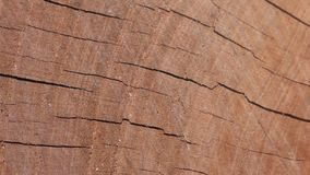 Механизм прерывного действия одушевил деревянную предпосылку текстуры полезную для старых влияний фильмов использующ инструмент с видеоматериал