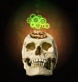 Механизм шестерни над открытым черепом с мозгом в Стоковые Фотографии RF