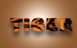 Меховой тигр текста Стоковые Изображения