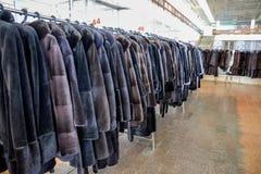 Меховые шыбы на вешалках Магазин меха меховые шыбы в ряд стоковые изображения rf