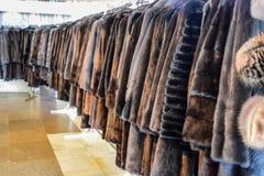 Меховые шыбы на вешалках Магазин меха меховые шыбы в ряд стоковое изображение rf