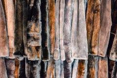 Меховые шыбы на вешалках Магазин меха меховые шыбы в ряд стоковые фотографии rf