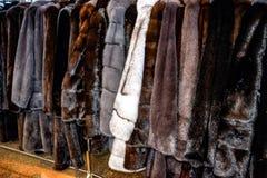 Меховые шыбы на вешалках Магазин меха меховые шыбы в ряд стоковые фото