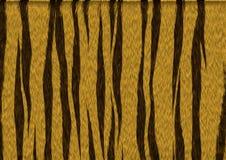 Мех тигра Стоковая Фотография