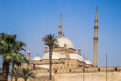 мечеть Мухаммед ali стоковое фото