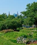 мечеть собора Стоковая Фотография