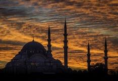 Мечеть Стамбула Стоковое Изображение RF