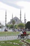Мечеть Ahmed султана Стамбула Стоковое Фото