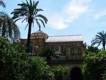 мечеть cordoba собора Стоковые Изображения