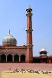 мечеть masjid jama Стоковая Фотография RF