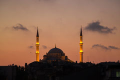 Мечеть ` s завоевателя Fatih Camii в Стамбуле, Турции Сумрак, птицы летает в силуэты Стоковая Фотография RF