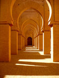 Мечеть Tinmel стоковые изображения