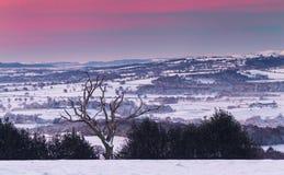 Мечтательный ландшафт зимы в Великобритании стоковое фото rf