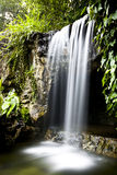 Мечтательный водопад в лесе Стоковое Изображение