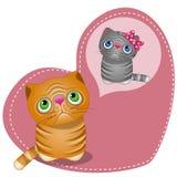 Мечтать кот Стоковое Изображение RF