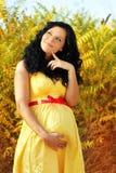 Мечтать красивейшая беременная женщина стоковое изображение rf