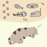 Мечтать дня кота Стоковое Фото