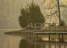 Мечта берега озера Стоковые Изображения