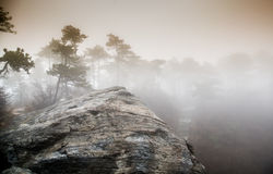 мечта долины Стоковая Фотография RF