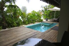 Мечт гостиница в тропических джунглях Стоковая Фотография RF