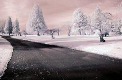 Мечт дорога Стоковая Фотография