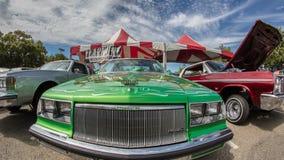 мечт зеленый цвет Стоковое Изображение