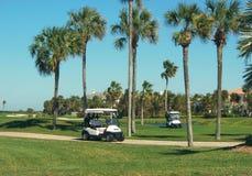 мечт зима игроков в гольф Стоковые Изображения