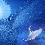мечт зима Стоковая Фотография RF