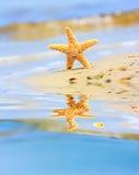 мечт лето Стоковое Изображение RF