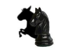мечт лошадь Стоковая Фотография