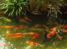Мечт парк атракционов мира, Бангкок, Таиланд Стоковое Изображение