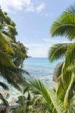 Мечт пляж на острове Стоковые Фото