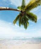Мечт пляж Стоковые Фотографии RF