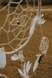 Мечт смертная казнь через повешение улавливателя в районе неорошаемого земледелия Стоковая Фотография RF