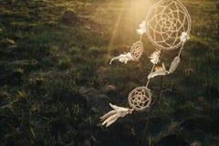 Мечт смертная казнь через повешение улавливателя от дерева в поле на заходе солнца Стоковое Фото
