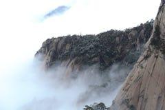 Мешают сосна покрытая снегом, горой морем облаков стоковое фото rf