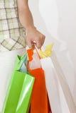 мешки держа женщину покупкы Стоковое Изображение RF