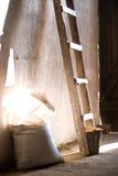 мешки Стоковое Фото