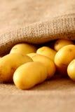 Мешок 1 картошек гессенский Стоковые Фото