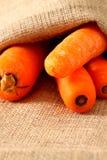 Мешок 2 морковей гессенский Стоковая Фотография