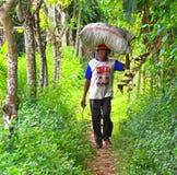 Мешок нося индонезийского человека травы Стоковое фото RF