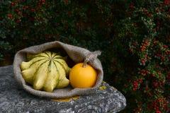 Мешок с кроной терниев и оранжевых тыкв на стенде Стоковые Изображения
