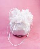 мешок bridal dorothy Стоковые Фотографии RF