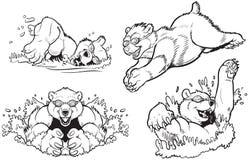 Медведи плавая и ныряя вектор Стоковое фото RF