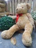 Медведь валентинки сидя на первом этаже Стоковые Фото