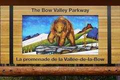 Медведь в картине пейзажа гор Стоковые Фото