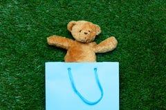 Медведь в хозяйственной сумке Стоковая Фотография