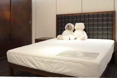 Медведь 2 игрушек на кровати стоковая фотография